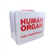 "LunchBox Human Organ 7.75"" x 6.75"""