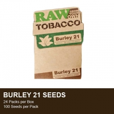 Raw Tobacco seeds - Burley 21