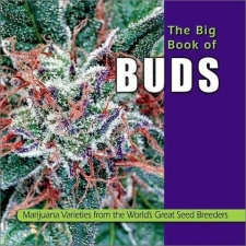 The Big Book Of Buds 1