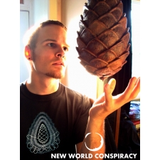 Pinecone Men's T-Shirt from New World Conspiracy